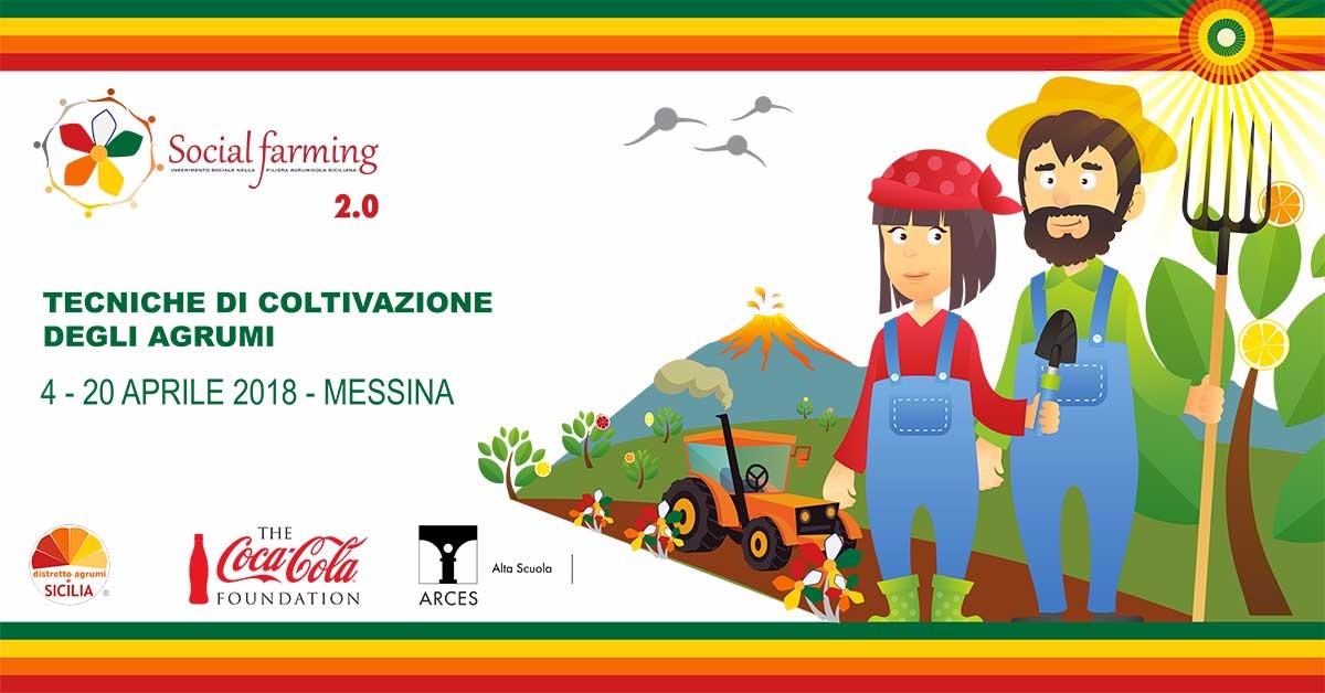 Tecniche di coltivazione degli agrumi - Corso di formazione previsto dal progetto Social Farming