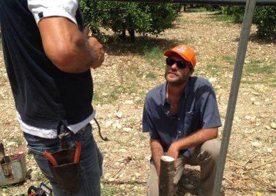 Tecniche di coltivazione di un agrumeto, corso tenutosi a Ribera (AG) - Progetto Social Farming Sicilia