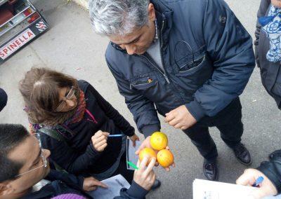 """Corso dal titolo """"Conservazione, lavorazione e confezionamento degli agrumi e dei loro derivati"""" a Barcellona Pozzo di Gotto (ME) e Palermo (PA) previsto dal progetto Social Farming"""